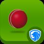 icon AppLock Theme - Cricket