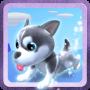 icon Puppy Runner