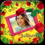 icon Roses Photo Frames Animated