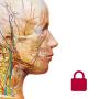 icon Anatomy & Physiology (Org.)