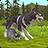 icon WildCraft 6.0