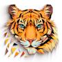 icon com.europosit.polygon2d.coloringpuzzle